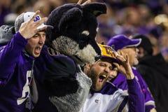 2016 NCAA Championship Game - Levi`s Stadium. Washington Huskies fans celebrate with Harry the Husky during the PAC-12 Championship game at Levi`s Stadium.  The Stock Images