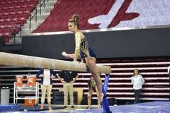 2015 NCAA dam gimnastyki - WVU Obraz Stock