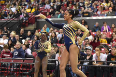 2015 NCAA dam gimnastyki - WVU Fotografia Royalty Free