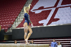 2015 NCAA dam gimnastyki - WVU Fotografia Stock