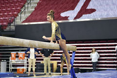 2015 NCAA-Damen-Gymnastik - WVU Stockbild