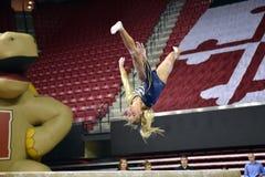 2015 NCAA-Damen-Gymnastik - WVU Lizenzfreie Stockbilder