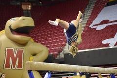 2015 NCAA-Damen-Gymnastik - WVU Stockbild