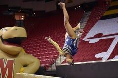 2015 NCAA-Damen-Gymnastik - WVU Stockbilder