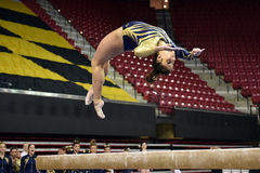 2015 NCAA Damesgymnastiek - WVU Royalty-vrije Stock Fotografie