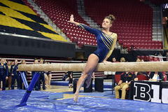 2015 NCAA Damesgymnastiek - WVU Royalty-vrije Stock Foto