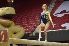 2015 NCAA Damesgymnastiek - WVU Stock Foto's