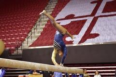 2015 NCAA Damesgymnastiek - WVU Royalty-vrije Stock Foto