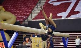 2015 NCAA Damesgymnastiek - WVU Stock Afbeelding