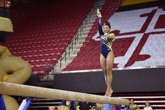 2015 NCAA Damesgymnastiek - WVU Stock Fotografie