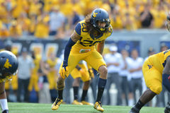 2015 NCAA Football - Maryland @ WVU Stock Photography