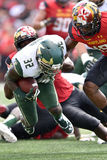 2015 NCAA Football - USF @ Maryland Royalty Free Stock Photography
