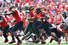 2015 NCAA Football - USF @ Maryland Stock Photo