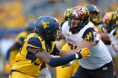2015 NCAA-fotboll - Maryland @ WVU Arkivbild