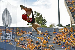 2015 NCAA futbol - Maryland @ WVU Obraz Stock