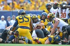 2015 NCAA futbol - Maryland @ WVU Obraz Royalty Free