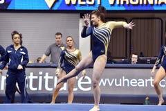2015 NCAA gimnastyki - Penn stan Obraz Royalty Free