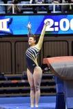 2015 NCAA Gymnastics - WVU-Penn State Royalty Free Stock Photography