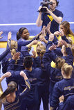 2015 NCAA Gymnastics - WVU-Penn State Royalty Free Stock Photography
