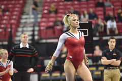 2015 NCAA Gymnastiek - Maryland Royalty-vrije Stock Foto