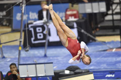 2015 NCAA Gymnastiek - Maryland Stock Foto