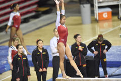 2015 NCAA Gymnastiek - Maryland Royalty-vrije Stock Foto's