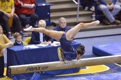 2015 NCAA Gymnastiek - Staat WVU-Penn Stock Fotografie