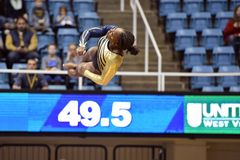2015 NCAA Gymnastiek - Staat WVU-Penn Royalty-vrije Stock Afbeeldingen
