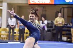2015 NCAA Gymnastiek - Staat WVU-Penn Stock Afbeelding