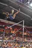 2015 NCAA Gymnastiek - West-Virginia Royalty-vrije Stock Afbeelding