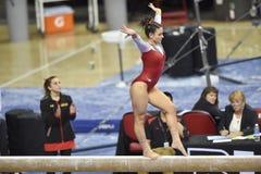 2015 NCAA-Gymnastik - Maryland Lizenzfreies Stockfoto