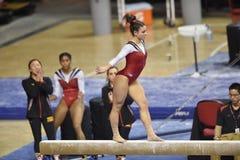 2015 NCAA-Gymnastik - Maryland Lizenzfreie Stockfotografie