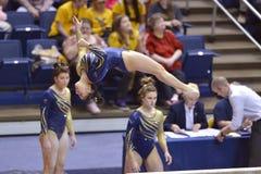 2015 NCAA-Gymnastik - WVU-Pennzustand Stockbild