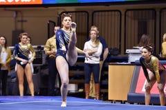 2015 NCAA-Gymnastik - WVU-Pennzustand Lizenzfreies Stockfoto