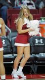 2014 NCAA het Basketbal van Mensen - TEMPEL versus LIU Royalty-vrije Stock Foto's
