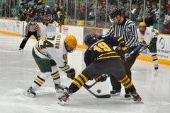 NCAA het Spel van het Ijshockey op Universiteit Clarkson Stock Fotografie