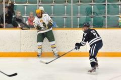 NCAA het Spel van het Ijshockey op Universiteit Clarkson Royalty-vrije Stock Afbeeldingen