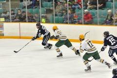 NCAA het Spel van het Ijshockey op Universiteit Clarkson Stock Foto's