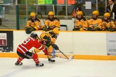NCAA Hockey Game Stock Photography