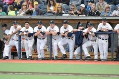 2015 NCAA Honkbal - wvu-TCU Royalty-vrije Stock Afbeelding