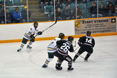 NCAA Ice Hockey Game in Clarkson University Royalty Free Stock Image
