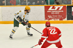 NCAA Ice Hockey Game in Clarkson University Royalty Free Stock Photo