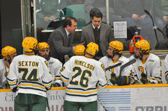 NCAA Ice Hockey Game in Clarkson University stock photos