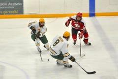 NCAA Ice Hockey Game in Clarkson University stock photography