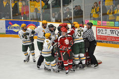 NCAA Ice Hockey Game in Clarkson University Stock Photo