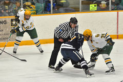 NCAA Ice Hockey Game in Clarkson University Stock Images