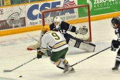 NCAA Ice Hockey Game in Clarkson University Stock Photo