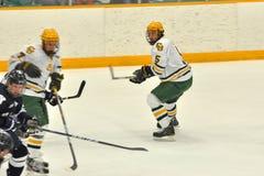 NCAA Ice Hockey Game in Clarkson University Royalty Free Stock Photography