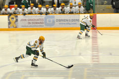 NCAA Ice Hockey Game in Clarkson University Royalty Free Stock Images
