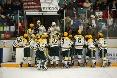 NCAA Ice Hockey Game in Clarkson University Royalty Free Stock Photos